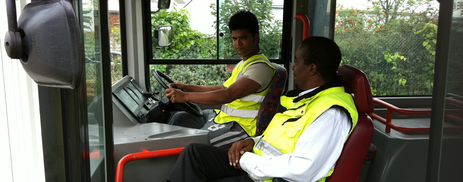 Want to earn a living as a bus driver?